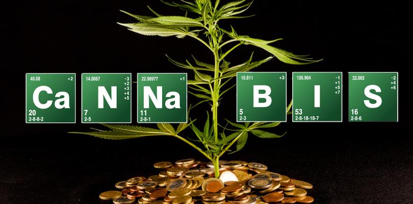 Legaal geld verdienen met wiet: Beleggen in marihuana