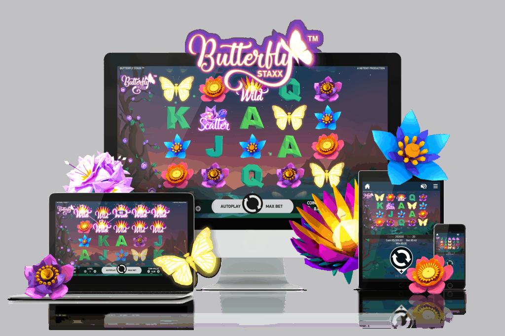 Butterfly Staxx Touch versie