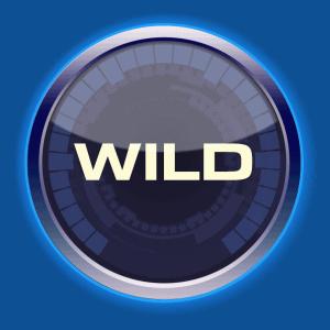 Drive: Multiplier Mayhem wild symbool