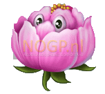 Flowers video slot gokkast - Roze bloem symbool