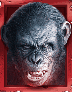 Planet of the Apes video slot gokkast - Dawn Aap 2 symbool