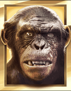 Planet of the Apes video slot gokkast - Rise Aap 2 symbool