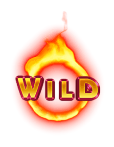 Dragon Chase video slot - Wildfire symbool