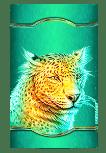 Raging Rhino Megaways slot - Cheetah symbol