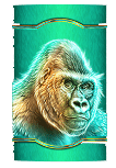 Raging Rhino Megaways slot - Gorilla symbol