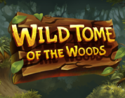 Wild Tome of the Wood video slot logo