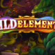 Wild Elements video slot logo
