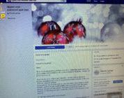 Facebook Diploterijen